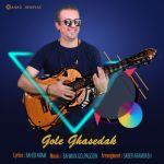 کاور آهنگ Ahad Horiyat - Gole Ghasedak