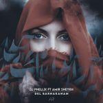 کاور آهنگ DJ Phellix Ft Amir Sheykh - Del Barnakanam