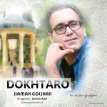 کاور آهنگ Siamak Golshan - Dokhtaro