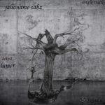 کاور آهنگ Lumer - Jahaname Sabz
