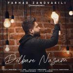 کاور آهنگ Farhad Zandvakili - Delbare Nazam