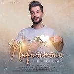 کاور آهنگ Hossein Golzar - Nafasimsan