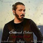 کاور آهنگ Siavash Bokaei - Ajab Kari Kardi