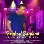 کاور آهنگ Farshad Deylami - Delam Pishet Gireh
