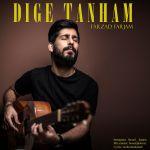 کاور آهنگ Farzad Farjam - Dige Tanham
