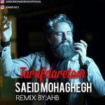 کاور آهنگ Saeed Mohaghegh - Tarafdaretam
