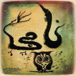کاور آهنگ Mohamadreza Naji - Dorough Nagoo