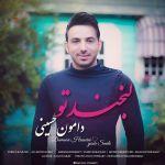 کاور آهنگ Damoon Hosseini - Damoon Hosseini