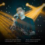 کاور آهنگ Matin Safarpoor - Gohare Nayab