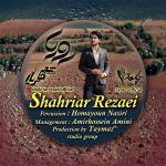کاور آهنگ Shahriar Rezaei - Roya