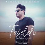 کاور آهنگ Mohammad Javad Rahmani - Faseleh