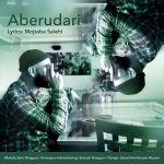 کاور آهنگ Mojtaba Salehi - Aberudari