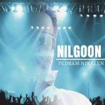 کاور آهنگ Pedram Nikaeen - Nilgoon
