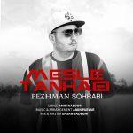 کاور آهنگ Pezhman Sohrabi - Mesle Tanhaei