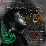 کاور آهنگ Peyman Keshvari - Roya