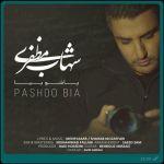 کاور آهنگ Shahab Mozaffari - Pashoo Bia