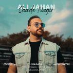 کاور آهنگ Ali Jahan - Saade Nagir