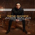 کاور آهنگ Amir Salar - Hame Donyami
