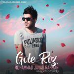 کاور آهنگ Mohammad Javad Rahmani - Gole Roz