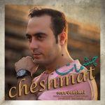 کاور آهنگ Reza Daneloei - Cheshmat