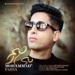 Mohammad Parsa - Bi Rahm