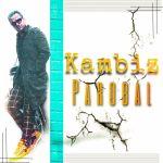 کاور آهنگ Kambiz - Parobal