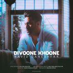 کاور آهنگ Navid Daneshfar - Divoone Khoone
