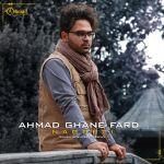 کاور آهنگ Ahmad Ghanefard - Nagofti