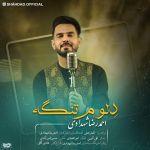 کاور آهنگ Ahmadreza Shahdadi - Delom Tange