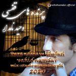 Vahid Namdar - Parandehaye Ghafasi