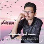 کاور آهنگ Mohammad Amin Rismanbaf - Pari Royam