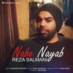کاور آهنگ Reza Salmani - Nabe Nayab