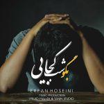 کاور آهنگ Erfan Hoseini - Bego Shab Kojaei