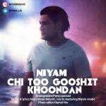 کاور آهنگ Niyam - Chi Too Gooshet Khoondan