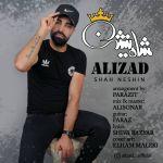 کاور آهنگ Ali Zad - Shah Neshin
