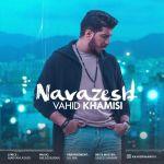کاور آهنگ Vahid Khamisi - Navazesh