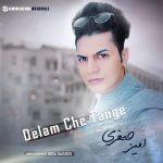 کاور آهنگ Amir Jafari - Delam Che Tange