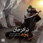 کاور آهنگ Peyvand - Baradar Jaan