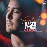 Naser Zeynali - Tavalod (Mani Live Remix)