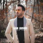 کاور آهنگ Farshid Zamani - Kam Avordi