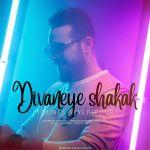 کاور آهنگ Younes Seyedipour - Divaneye Shakak