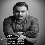 کاور آهنگ Ramin Shahrestani - Zemestoon
