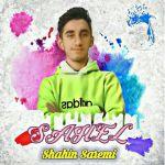 کاور آهنگ Shahin Saremi - Sahel