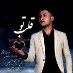 کاور آهنگ Mazyar Parhizi - Ghalbe To