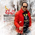 Nader Gharaei - Arezoo