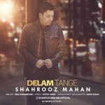 کاور آهنگ Shahrooz Mahan - Delam Tange