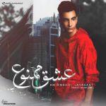 کاور آهنگ Amir Mahdi Lavasani - Eshgh Mamnoo
