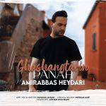 کاور آهنگ Amirabbas Heydari - Ghashangtarin Panah