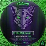 کاور آهنگ DJ Hossein Fallah - Palang