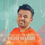 کاور آهنگ Meysam Ebrahimi - Halish Nemishe